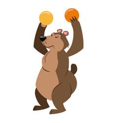 Circus bear animal show balls carnival vector