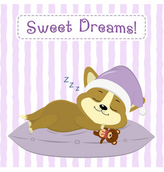 cute puppy corgi in a pink hat sleeps on a vector image
