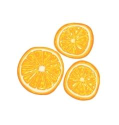Half Of Orange Fruit And Orange Slice Next To It vector