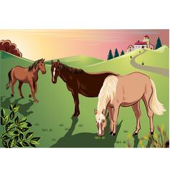 Horses grazing in a meadow vector