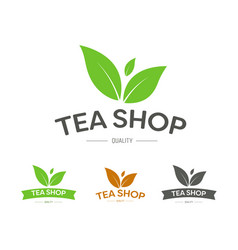 Logo for a tea shop or brand with three leaves vector