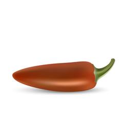 natural hoti pepper vector image