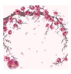 pink salkura in spring sumer vector image