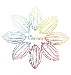 Watercolor cocoa fruits vector