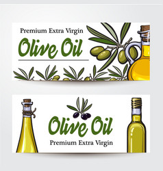banners with olive tree branches oil bottles and vector image