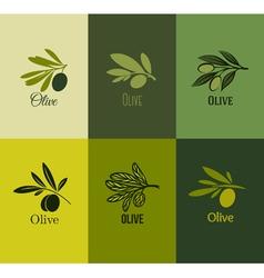 Olive branch set of labels vector