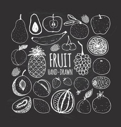 set of fruit in doodle style on the chalkboard vector image