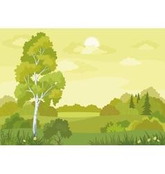 Woodland landscape vector image vector image