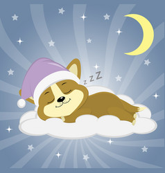 cute puppy corgi in a pink hat is sleeping on a vector image