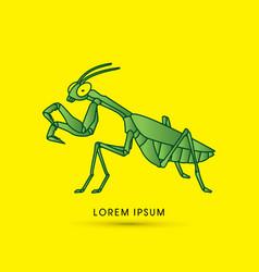 mantis mantodea grasshopper vector image