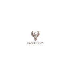 vintage eagle hawk falcon with hop for craft beer vector image