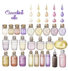 Watercolor essential oils vector