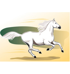 White horse galloping vector
