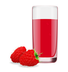 juice from ripe raspberry vector image
