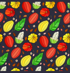 cocoa fruit doodle seamless pattern vector image