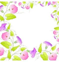 flowers frame bindweed vector image