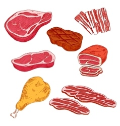 Fresh and cooked meat products for barbecue design vector