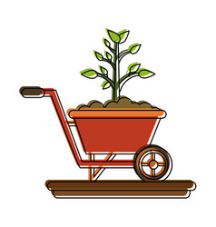 plant on wheelbarrow vector image
