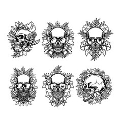 set skull and exotic tropical flowers vector image