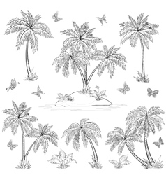 Tropical island palms and butterflies outline vector image vector image