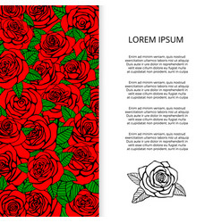 red roses and leaves banner design vector image vector image