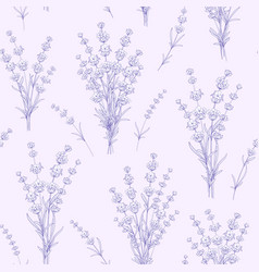 Seamless pattern of lavender flowers vector