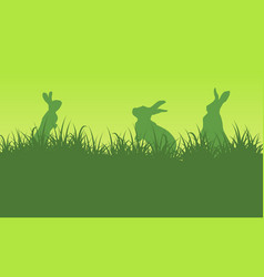 silhouette of bunny on green backgrounds vector image