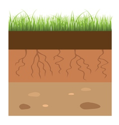 soil layers vector image vector image