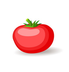 Big red tomatoe icon isolated fresh vegetables vector
