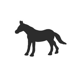 black silhouette horse isolated on white vector image