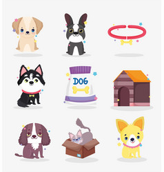 cute dogs puppy food collar house domestic cartoon vector image