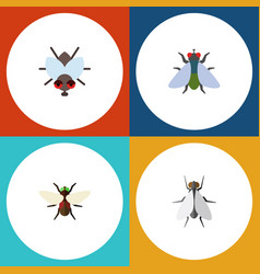 Flat icon fly set of fly hum bluebottle and vector