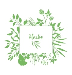 Fresh herbs store emblem Green square frame with vector image