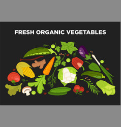 fresh vegetables advertisement with organic vector image