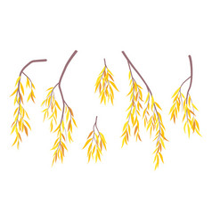 Simple autumn weeping willow branches and foliage vector