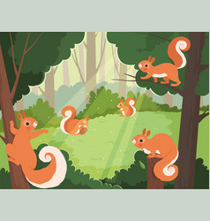 squirrel in forest wild animals playing in trees vector image