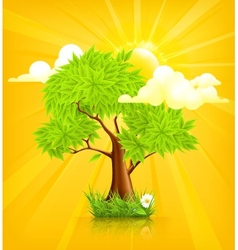 Sun and Tree vector image