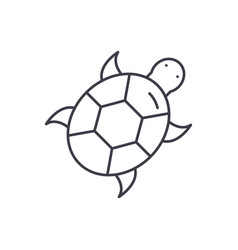 turtle line icon concept turtle linear vector image