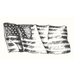 USA flag isolated drawn sketch vector image