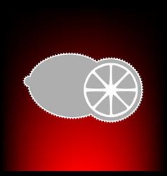fruits lemon vector image vector image