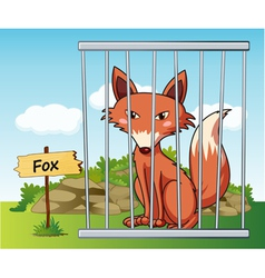 Cartoon Zoo Fox vector