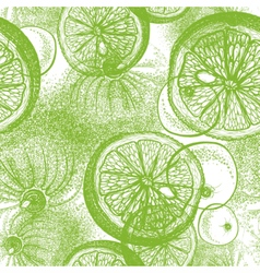 Seamless pattern with hand drawn lime vector image