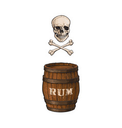 Wooden rum barrel skull cross bones set vector
