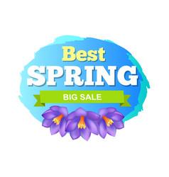 best spring big sale advertisement label crocus vector image