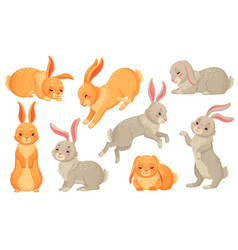 cartoon bunny rabbits pets easter bunnies and vector image