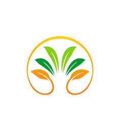 green leaf ecology beauty organic logo vector image