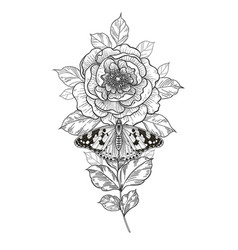 Hand drawn peony flower and butterfly vector