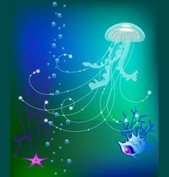Jelly fish underwater world sea shell vector