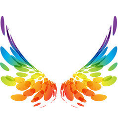 pair colorful wings on white vector image