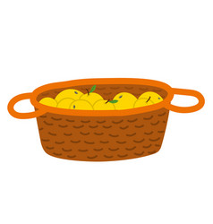 Apples in wooden basket picking fruit vector